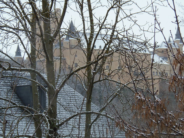 Invierno: un tapiz de nieve