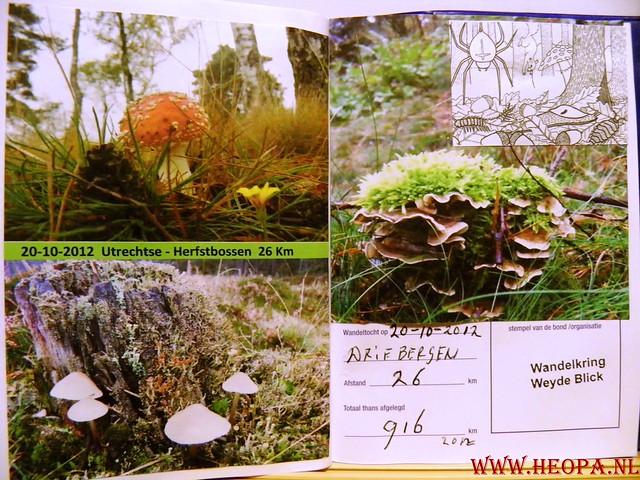 20-10-2012     Wedeblick-   Driebergen        25 Km (178)
