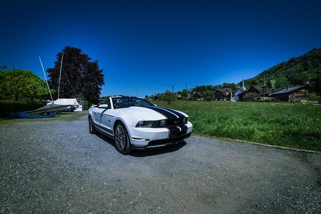 Mustang in Greppen - Switzerland