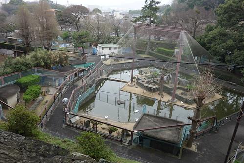 和歌山公園動物園 | by Richard, enjoy my life!
