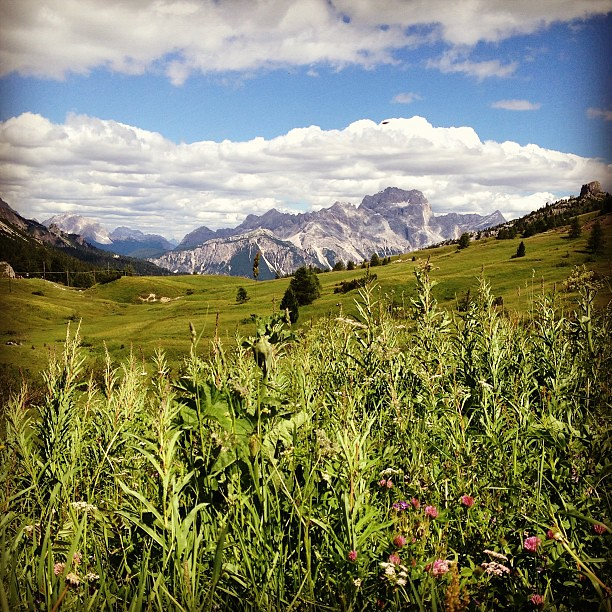 Beautiful view of the #mountains in the back #panorama #landscape #sky #clouds #grass #flowers