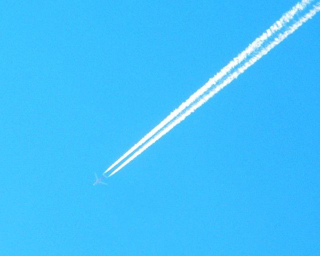 Airbus A330 40.000' alt. about 1315h, Sunday 16 Feb 2014