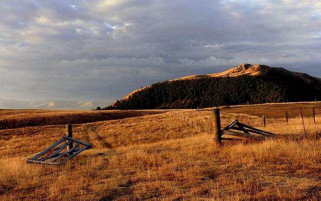 Beyond the farm gate.