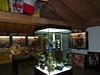 Muzeum F. Mosera, foto: Petr Nejedlý