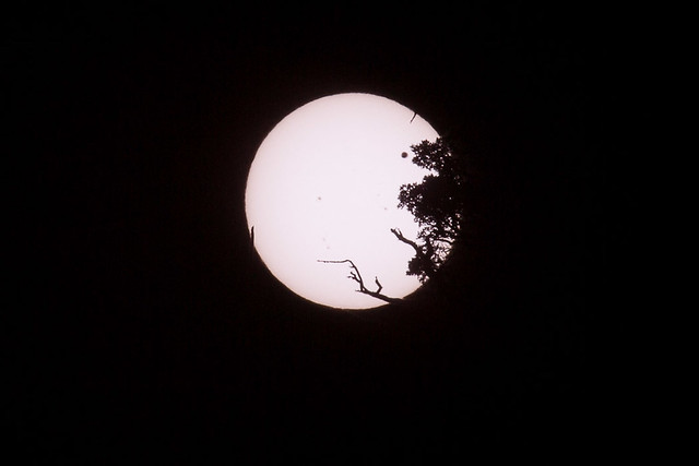 Venus Transit of the Sun, from Earth