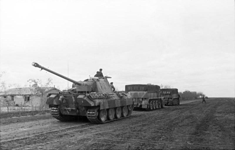 Panther & Tiger (1)