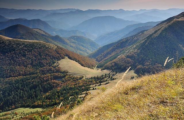 Malá Fatra - dolina Bystrička
