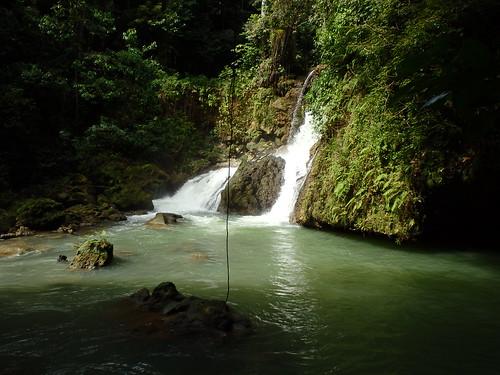 jamaica ysfalls