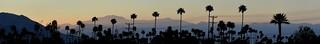Palm Springs pano 2014   by Gord McKenna