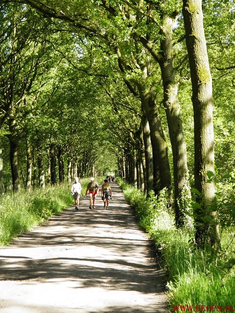 2012-06-30 's-Hertogenboch    31 Km (54)