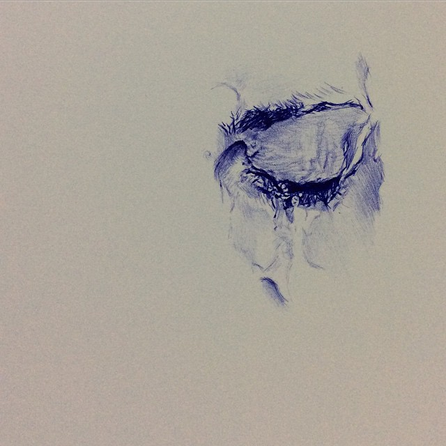 Work in progress  Ballpoint pen drawing with reference to
