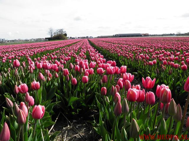 Castricum 15-04-2012 26 Km (36)