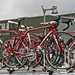 2010 Tour of Denmark, Team Presentation