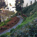 Image: a winding garden path at the peak