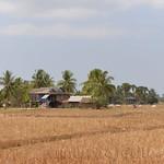 16 Kampot 47