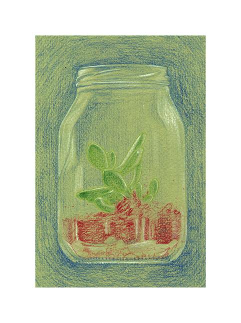 succulent jar