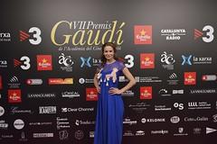 Catifa vermella VII Premis Gaudí (66)