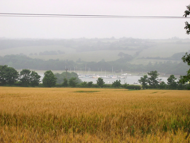 The River Medina from Whippingham