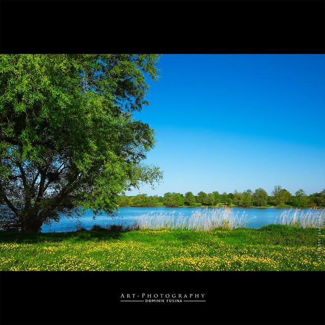 Saône river | FUJI x-T1 + 18 mm