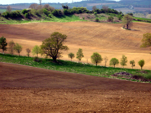 IMG_1399   by zaphad1