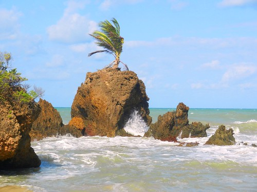 Tambaba, Praia de Nudismo / Nudism beach, Tambaba   Argosfoto