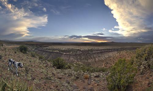 sunset dog newmexico santafe clouds plateau canyon greatdane harlequin sandiamountains lacienega santaferiver deutschedogge labajada ortizmountains cajadelrio tetillapeak cloudsstormssunsetssunrises