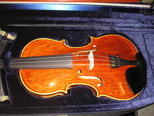My new violin!!   by firepile