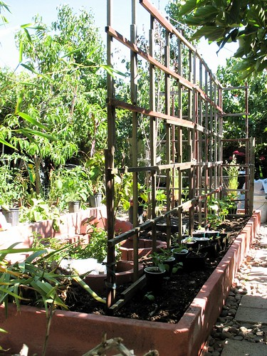 Vegetable Bed with Trellises | by joeysplanting