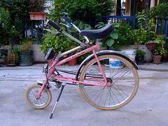 Uno strano tipo di bici   by Cayman Of Puppets