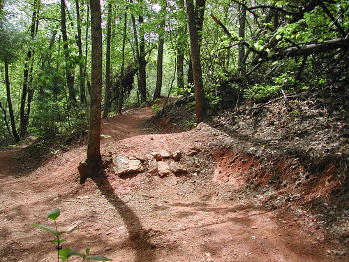 trails bikes singletrack