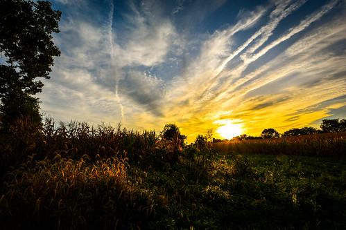 morning sunrise landscape fields goldenhour