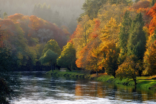 autumn trees walking scotland rivertay perthshire dunkeld autumnwatch ericrobbniven