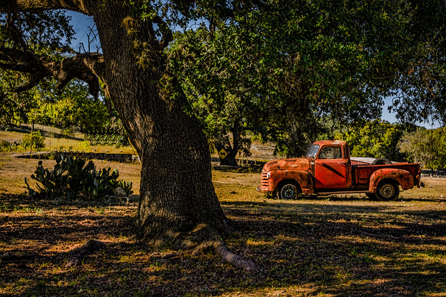 Texas Country Side