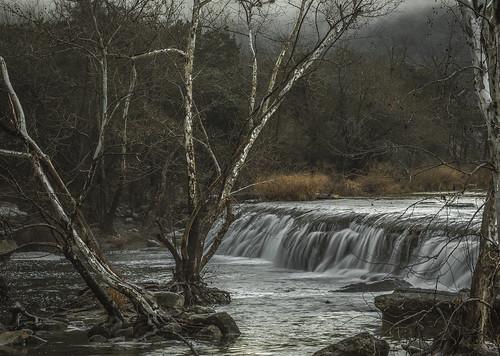 dew fog figgy moisture moist water mist rain austin bullcreek winter texas olympus