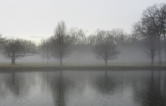 Morning Mist in Winter