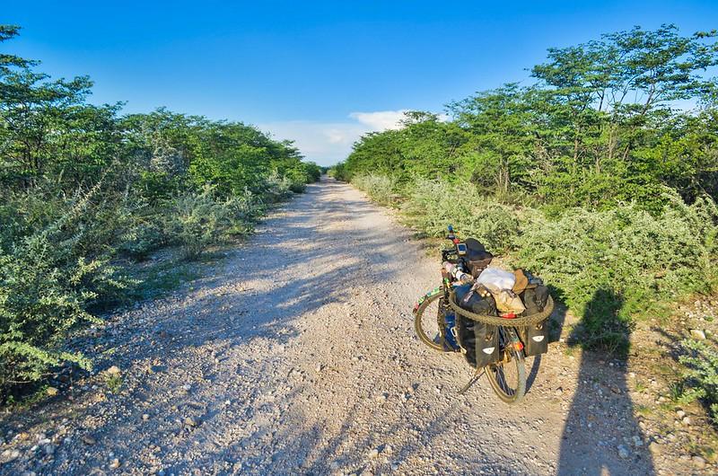 Day503-Bike-140321