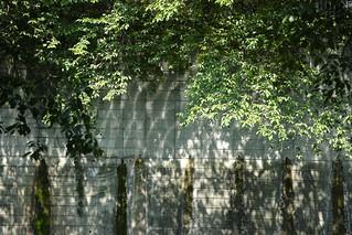 Daylight@Shinjyuku_Tokyo_022