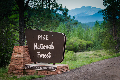 Pike National Forest | by fermicat