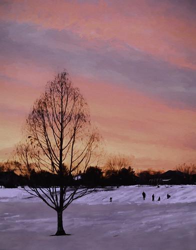 trees houses winter people kids illinois sunsets sleds mountprospect hss nikkor24120mm sliderssunday