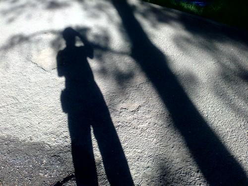 Shadows | by felixp7