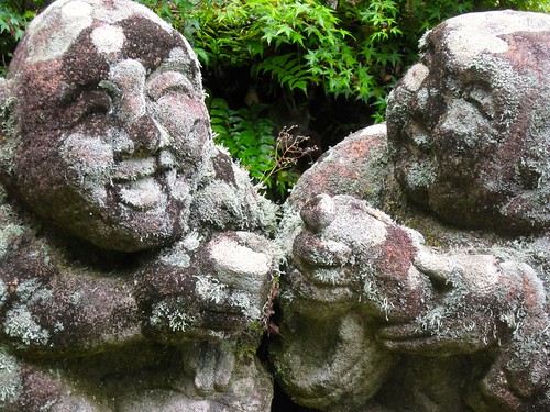 have some more sake, its good for the lichen
