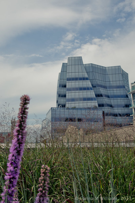 NYC_Highline
