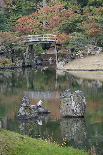 Hikone Genkyūen 04 彦根 玄宮園