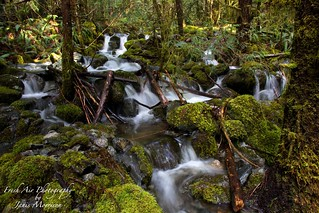 Mountain stream leading into Harris Creek, Vancouver Island, B.C.