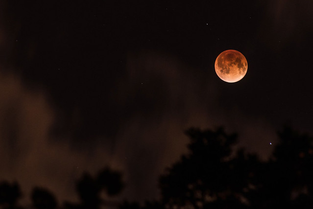 blood moon january 2019 orlando - photo #34