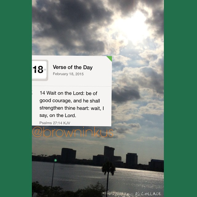Verse a day 2015 Message version Psalm 27:13-14 I'm sure n