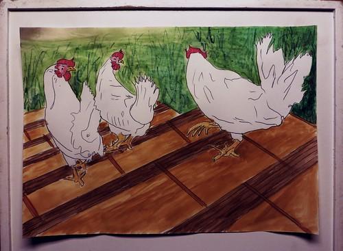 chicken-walking-downstairs
