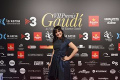 Catifa vermella VII Premis Gaudí (16)