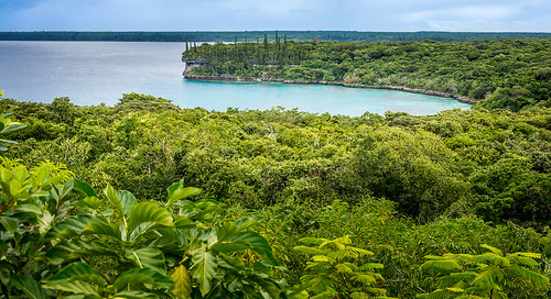 nature bay nikon day cloudy overcast fromabove greenery newcaledonia nouvellecaledonie lifou lightroom baie loyaltyislands d7100 jinek nikkor18105mmf3556 provincedesiles christopheroberthervouet ilesloyalte islandsprovince