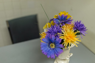 Staff flowers | by ZensLens